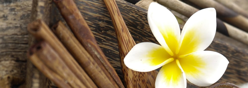 Chemtex USA – Supplier of Flavors, Fragrances, Essential Oils