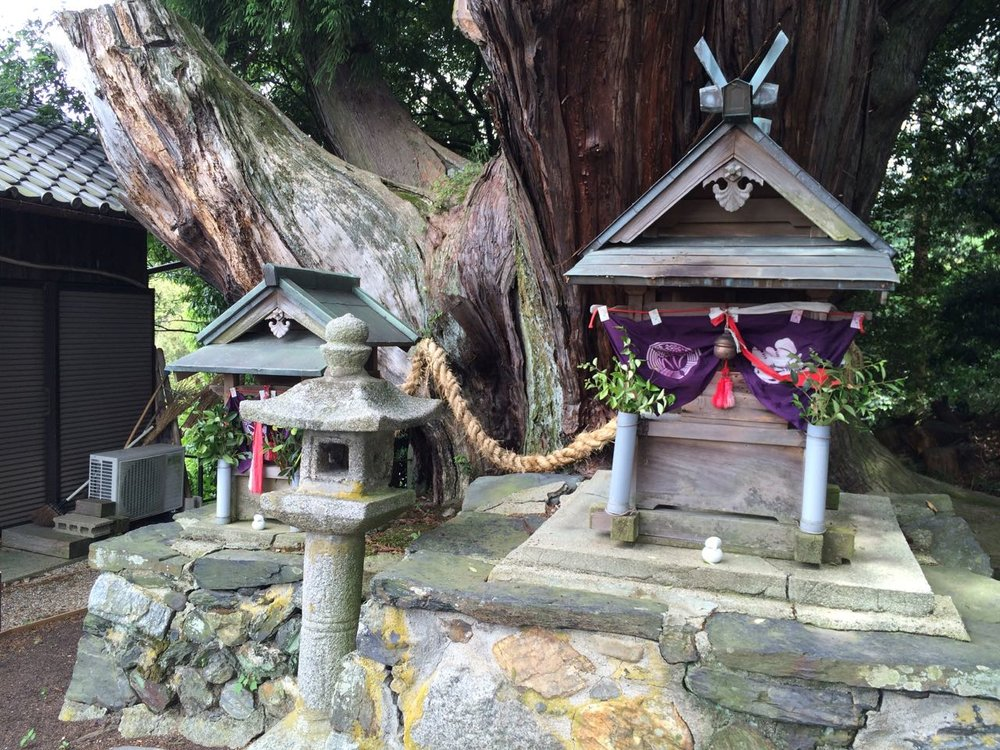 Shrine to the eight-limed tree