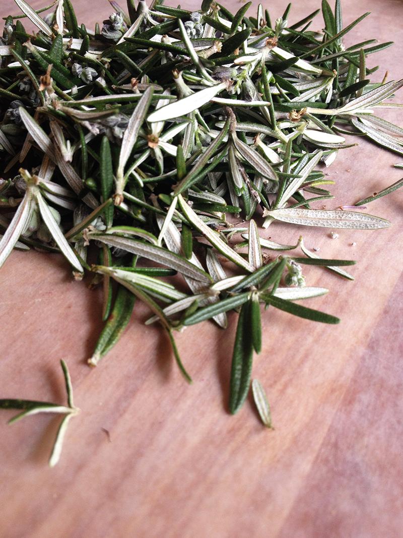 Rosemary syrup recipe. | saragalactica.com