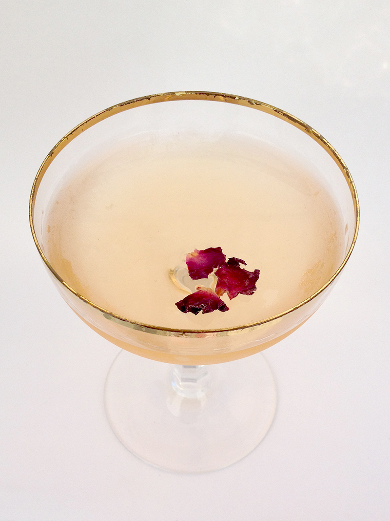 Lallybroch: A cocktail inspired by Outlander. Gin, Grand Marnier, Douglas fir syrup, rose infused apple cider vinegar, bitters. | saragalactica.com