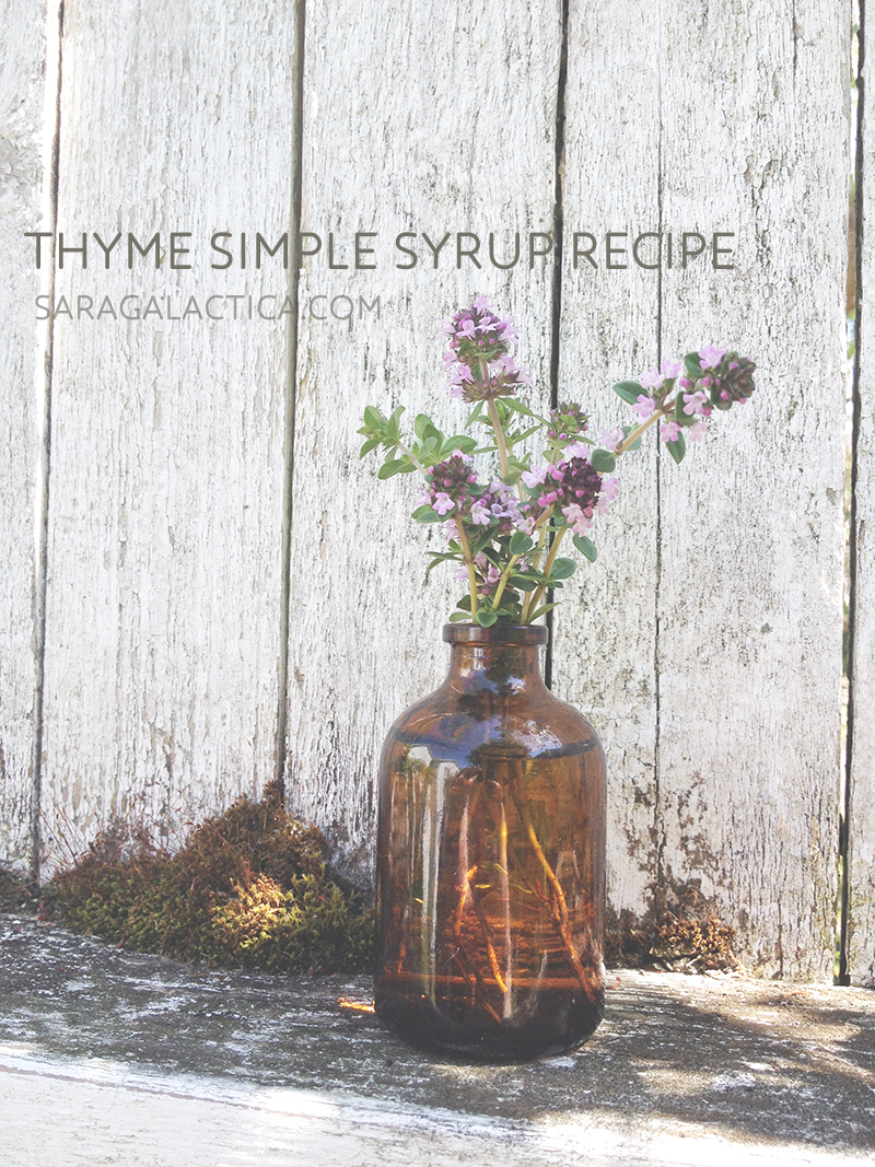 Thyme simple syrup recipe. | saragalactica.com