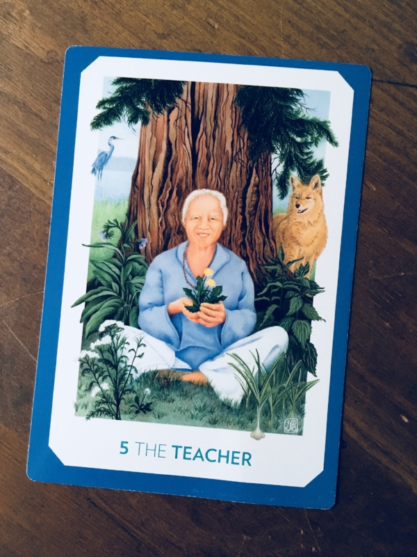 """The Teacher,"" The Gaian Tarot"