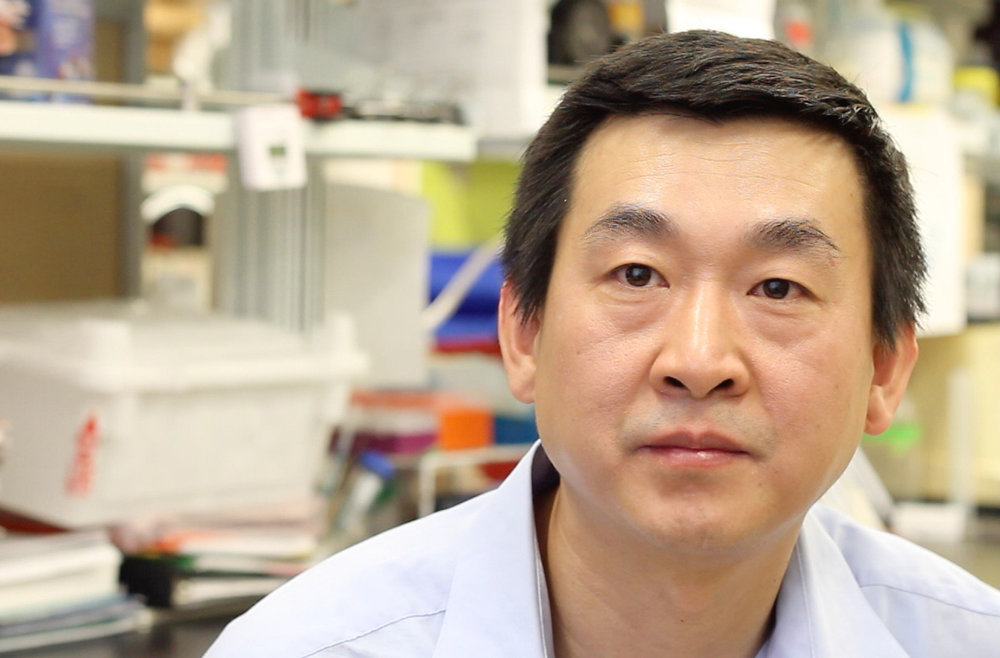 Baosheng Chen Clinical Research Scientist