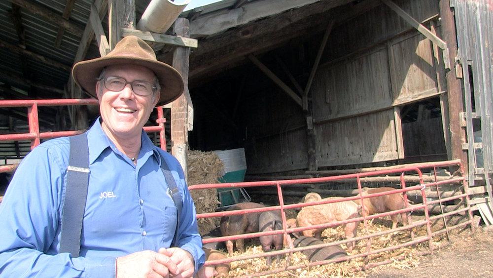 Joel Salatin   Owner, Polyface Farm Swoope, Virginia