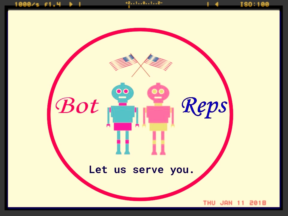 BotReps Two.jpg