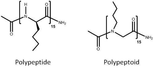 Fig. 1: Polypeptoids move the 'R' group of a peptide from the chiral carbon to the nitrogen.