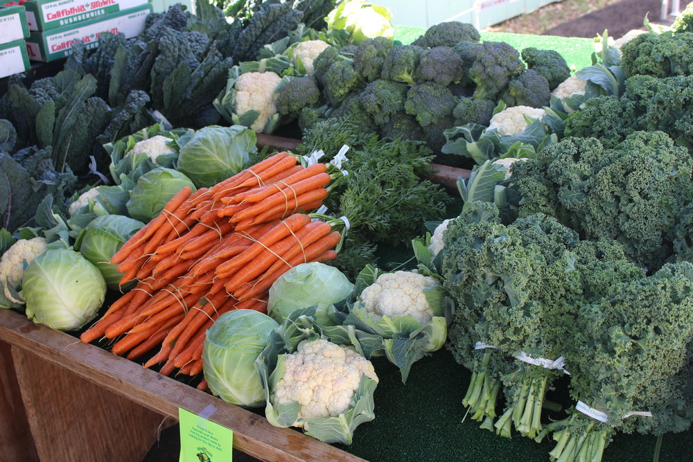 Beautiful certified organic produce from Rancho La Familia at our Local Vendor Fair, June 2017.