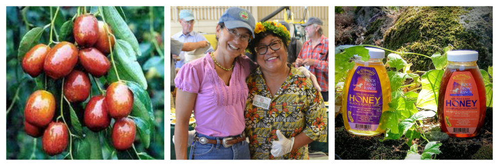 Organic Jujubes, Alisha Taff and friend Ophelia Rabanal, Sage and Wildflower Honey. Photos courtesy of Rock Front Ranch.