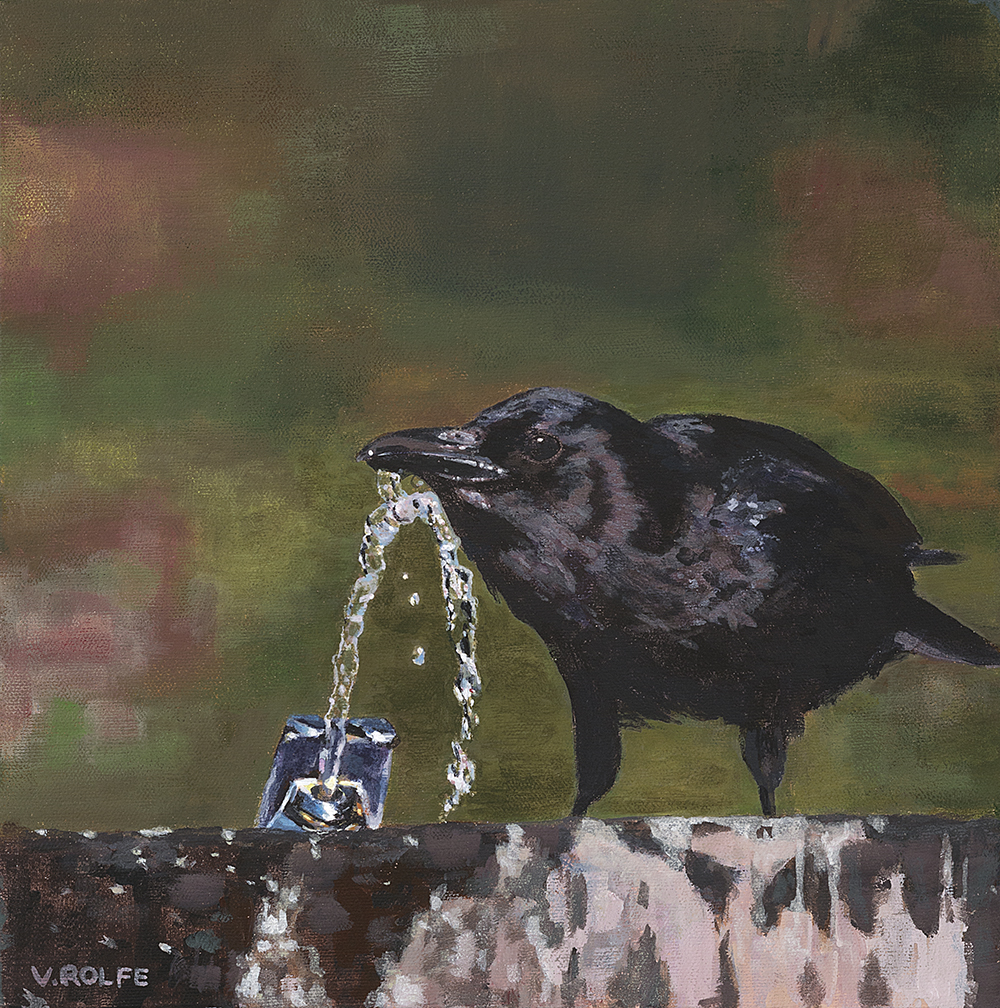 The Clever Crow
