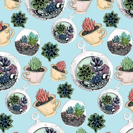 cacti-cardrd.jpg