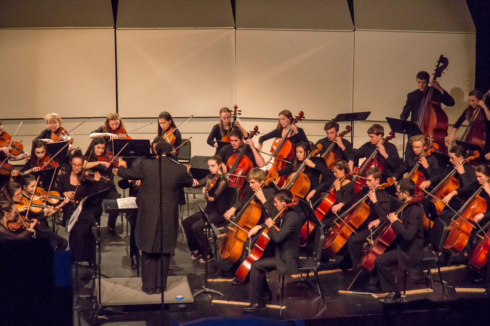 BHS-orchestra-8.jpg