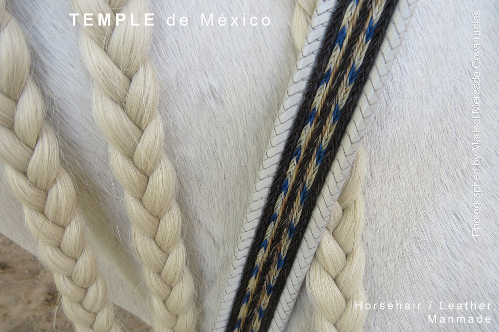 Whithe-horsehair.jpg