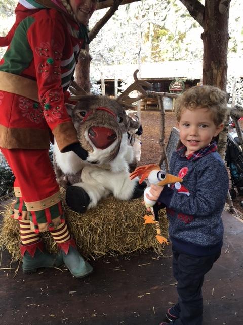 "Meeting ""Rudolph"""