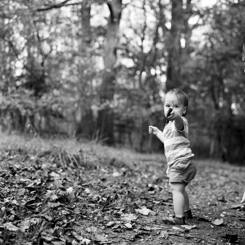 Little boy holds leaf during Ventura family photography session