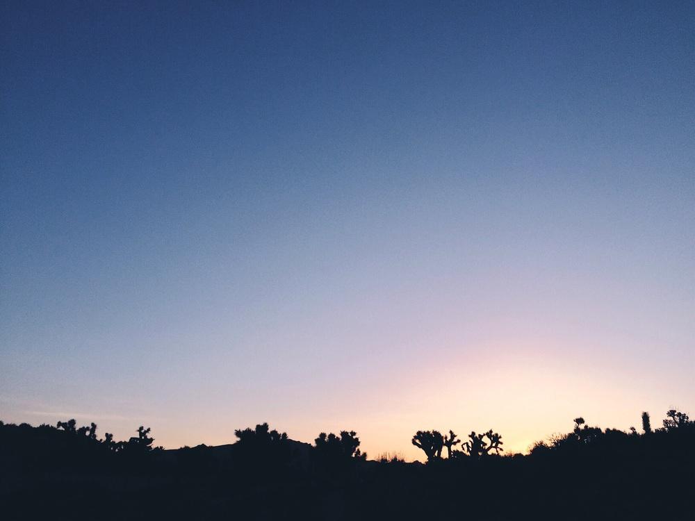 So many great sunrises.