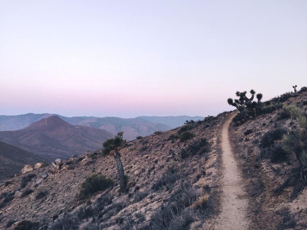 The trail at dawn.