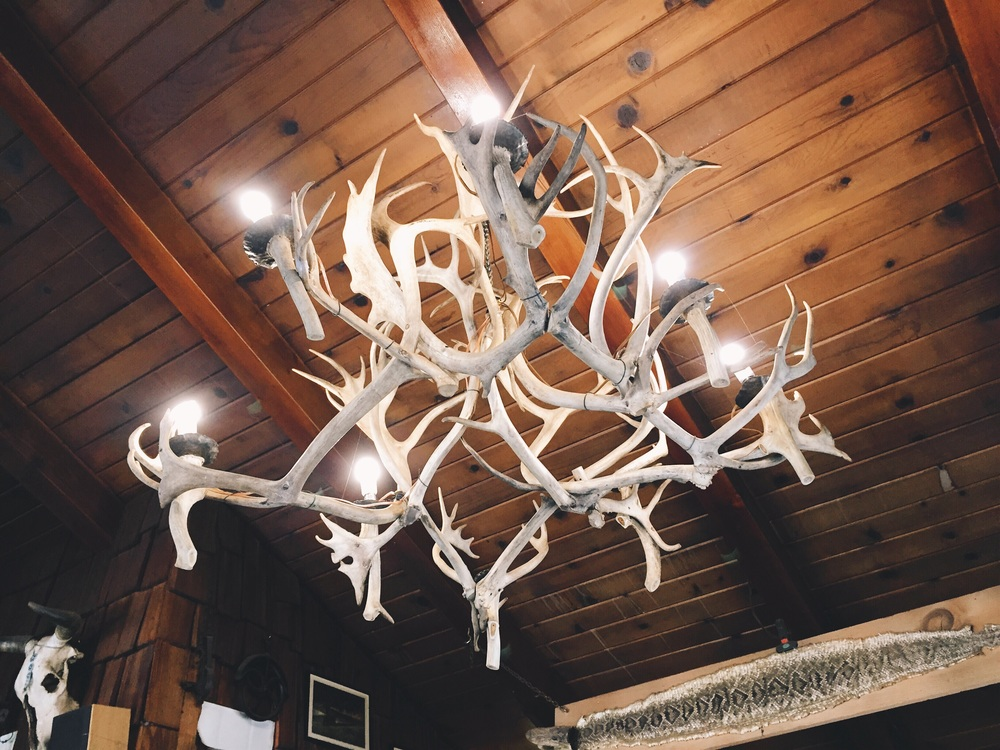 Looking up at the antler chandelier at grumpys.