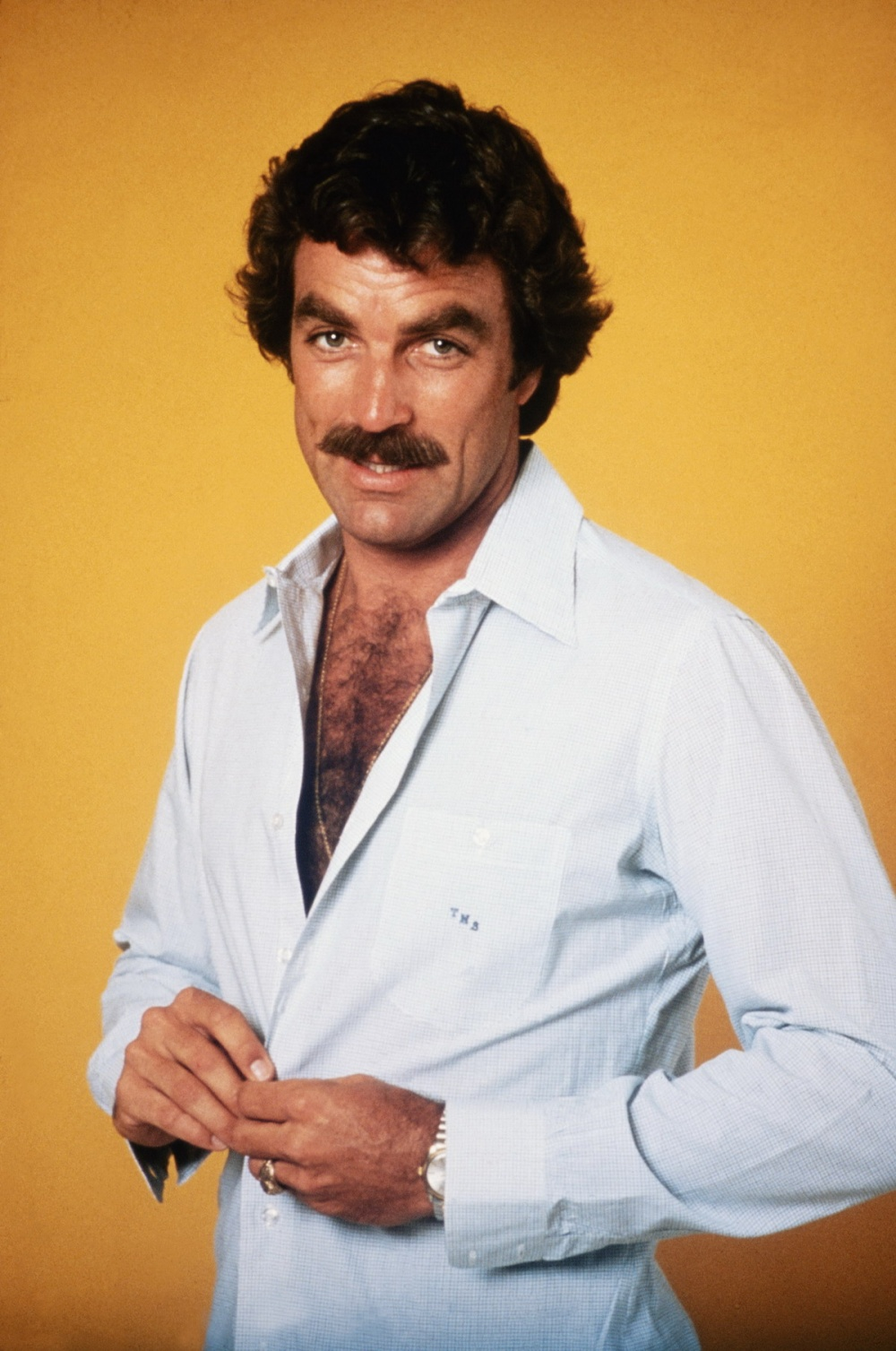The Chevron / The Selleck: Many will try, few will succeed. The Selleck is the ultimate authoritative 'stache. A timeless symbol of sex and confidence, the Chevron-wearer is lean, serious, drives a Dodge Viper and absolutely incapable of putting up with bullshit. Time to get: Five months Worn by: Tom Selleck, Aamir Khan (in Mangal Pandey)