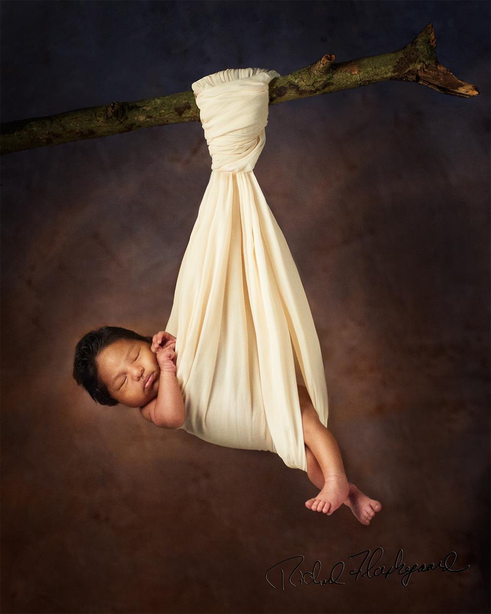 baby photography, newborn photography, photographer, greenwich, darien, norwalk, stamford, rye, white plains