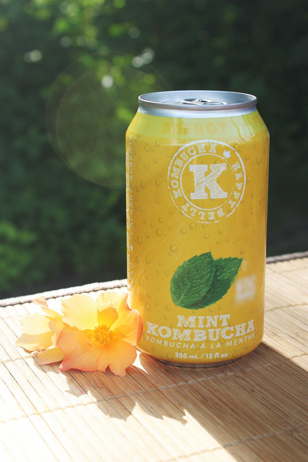 mint_lifestyle2.jpg