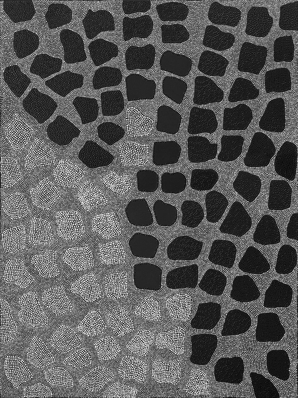 Skins // 40'' x 36'' // 2015