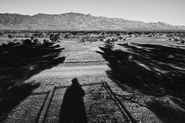 Last day on the desert farm 🌵. Took a stroll at 7am to try and beat the intensity of the direct light. It beat me.