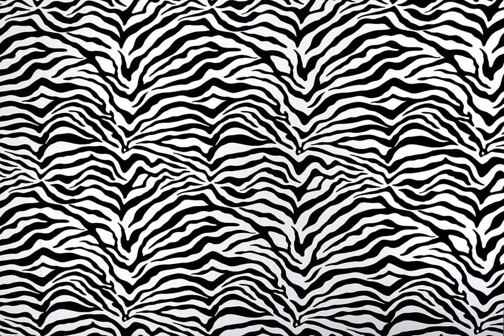 RedLab-Studios-North-Hollywood-23-Zebra-Set-Wall-0432.jpg