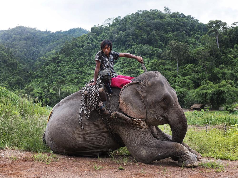 KELLY_WWF_Tanintharyi_2**.jpg