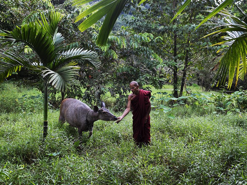 KELLY_WWF_Tanintharyi_4.jpg