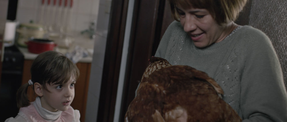 SO24_B04_The Chicken_still 8.jpg
