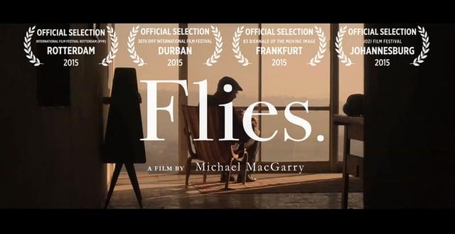 flies3.jpg