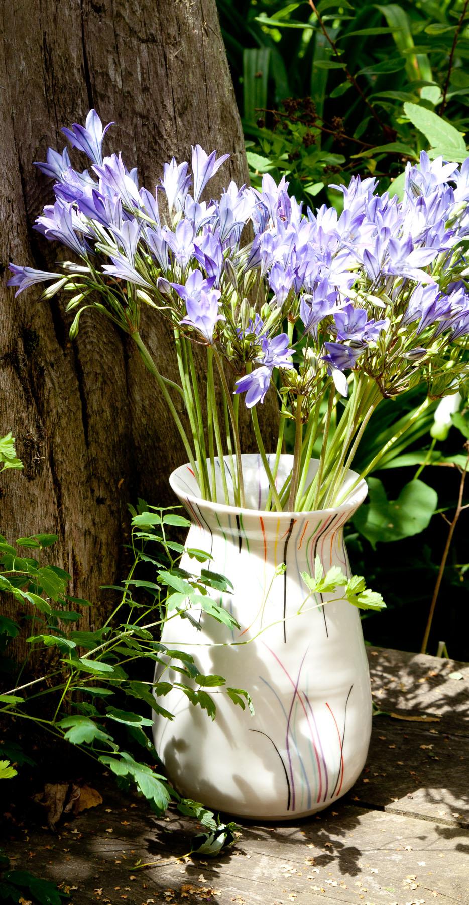 vase-driftwood.jpg
