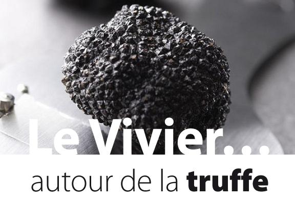 truffe au Vivier