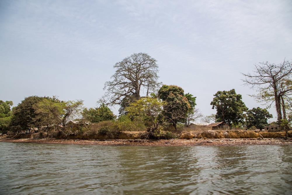 Taso island banks
