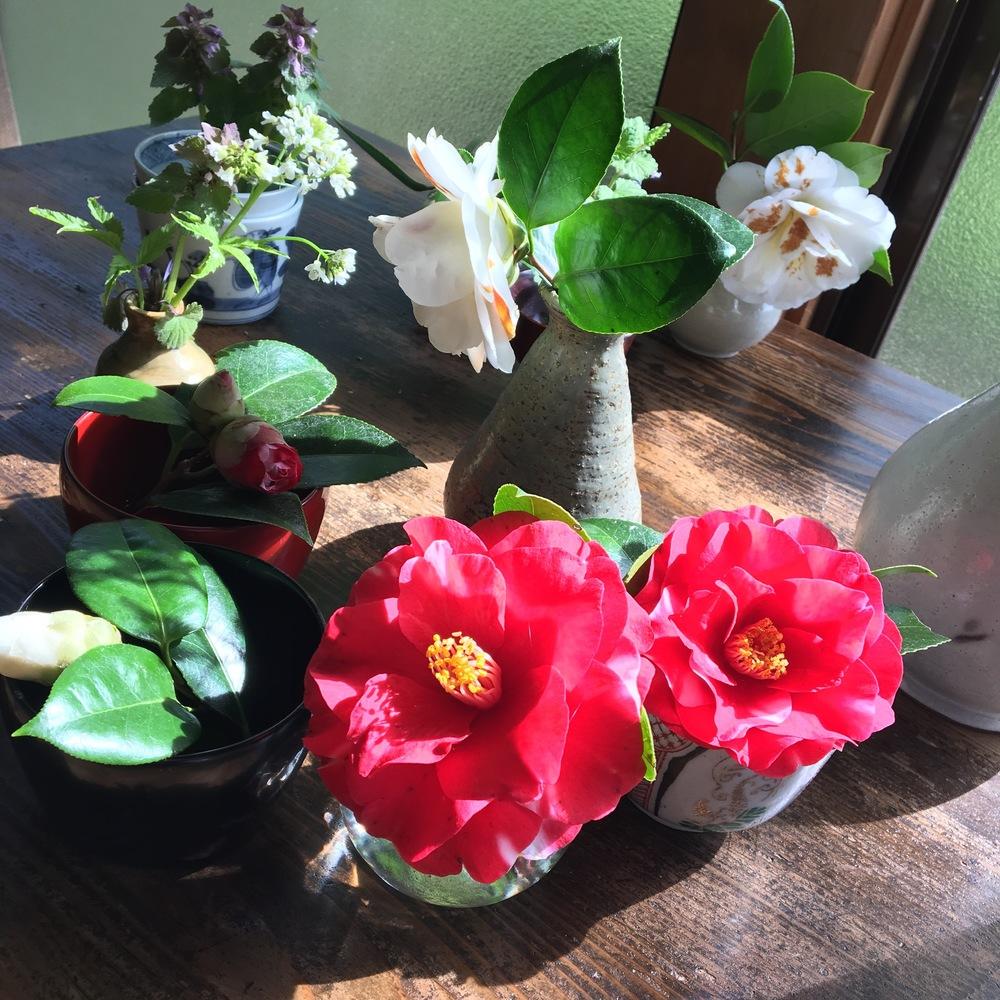 期間中、各テーブルで華を添えてくれた野の花たち。処分しようと1箇所に集めたら・・・アラ、綺麗!