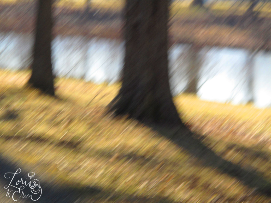 motion blur from my bike