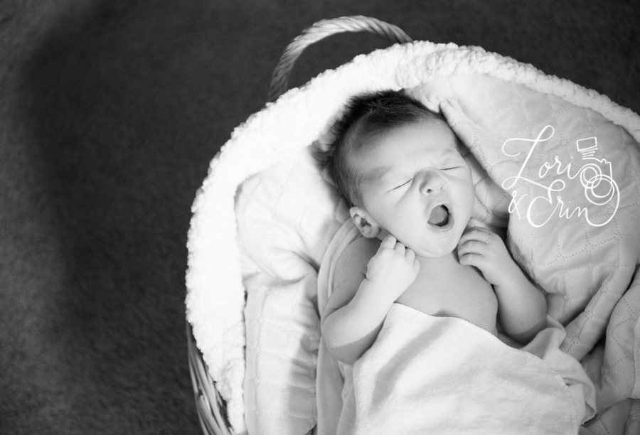 Rochester NY Newborn Sessions