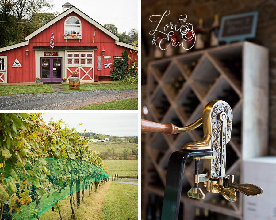 Virginia Wine Photography, Rochester NY Destination Photographers