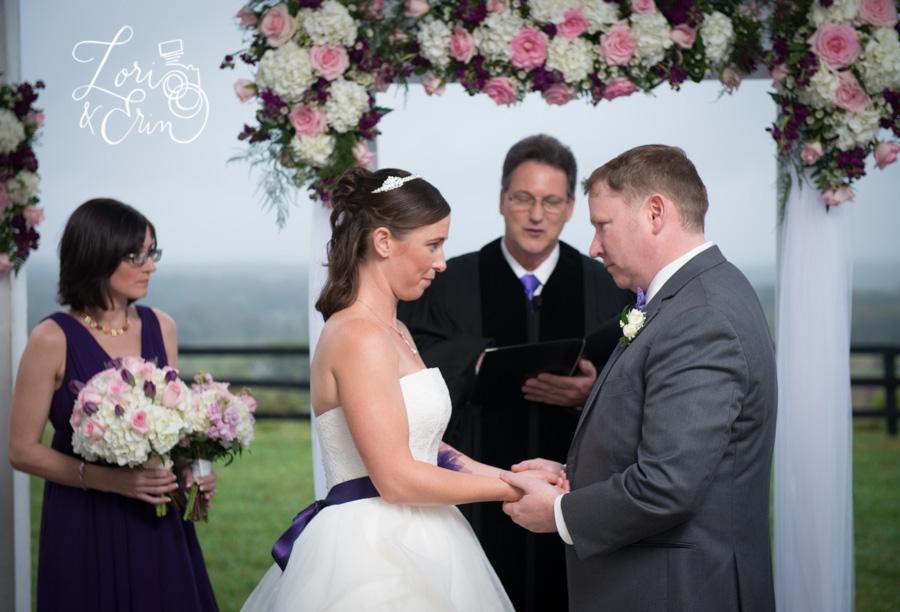 Destination Wedding Photography, Virginia Wine Country, Bluemont Vineyard
