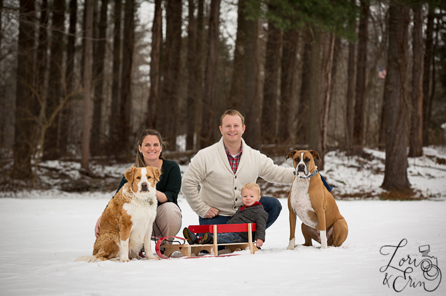 family with dogs and sled