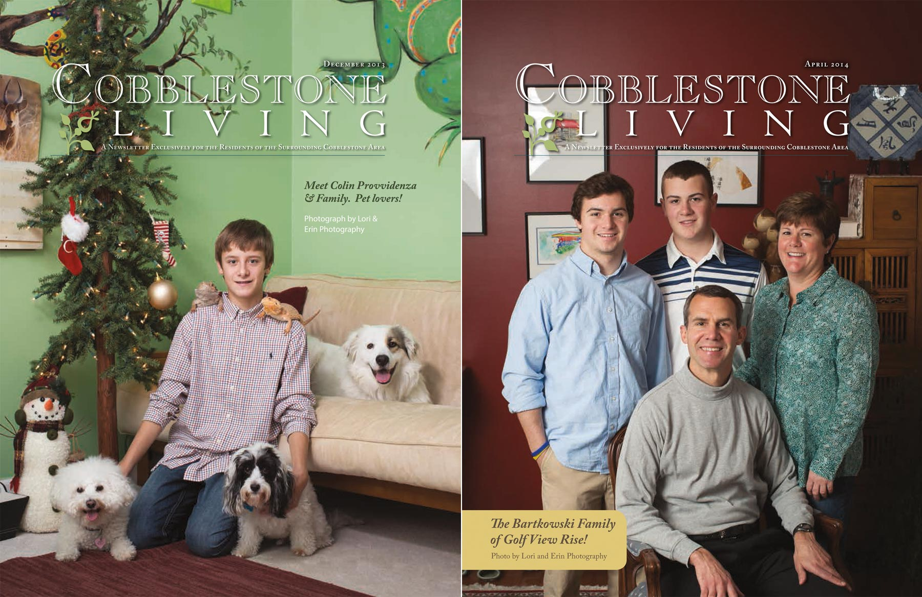 cover of cobblestone living