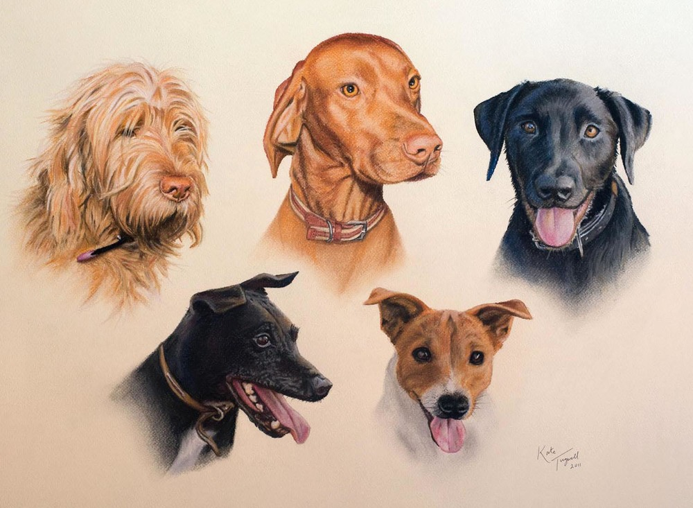 Dog-portrait---5-Dogs-Pastel-1500x1100.jpg
