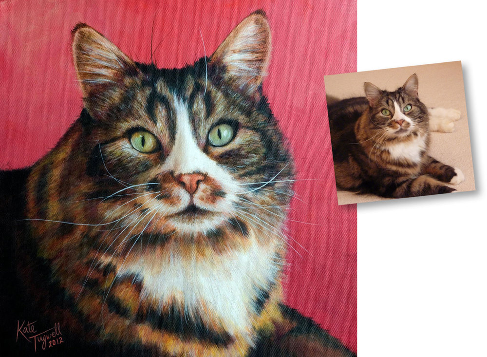 Cat-portrait---Tabatha-tabby-1500x1100.jpg