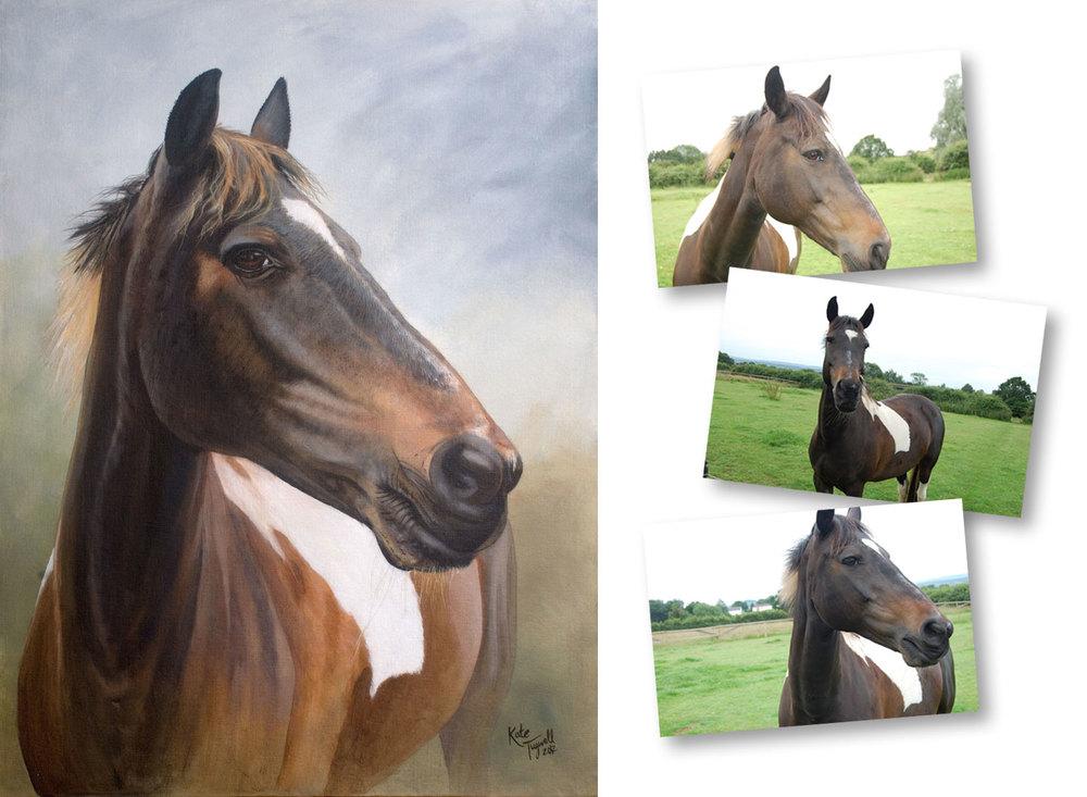 Horse-portrait---Saffie-1500x1100.jpg