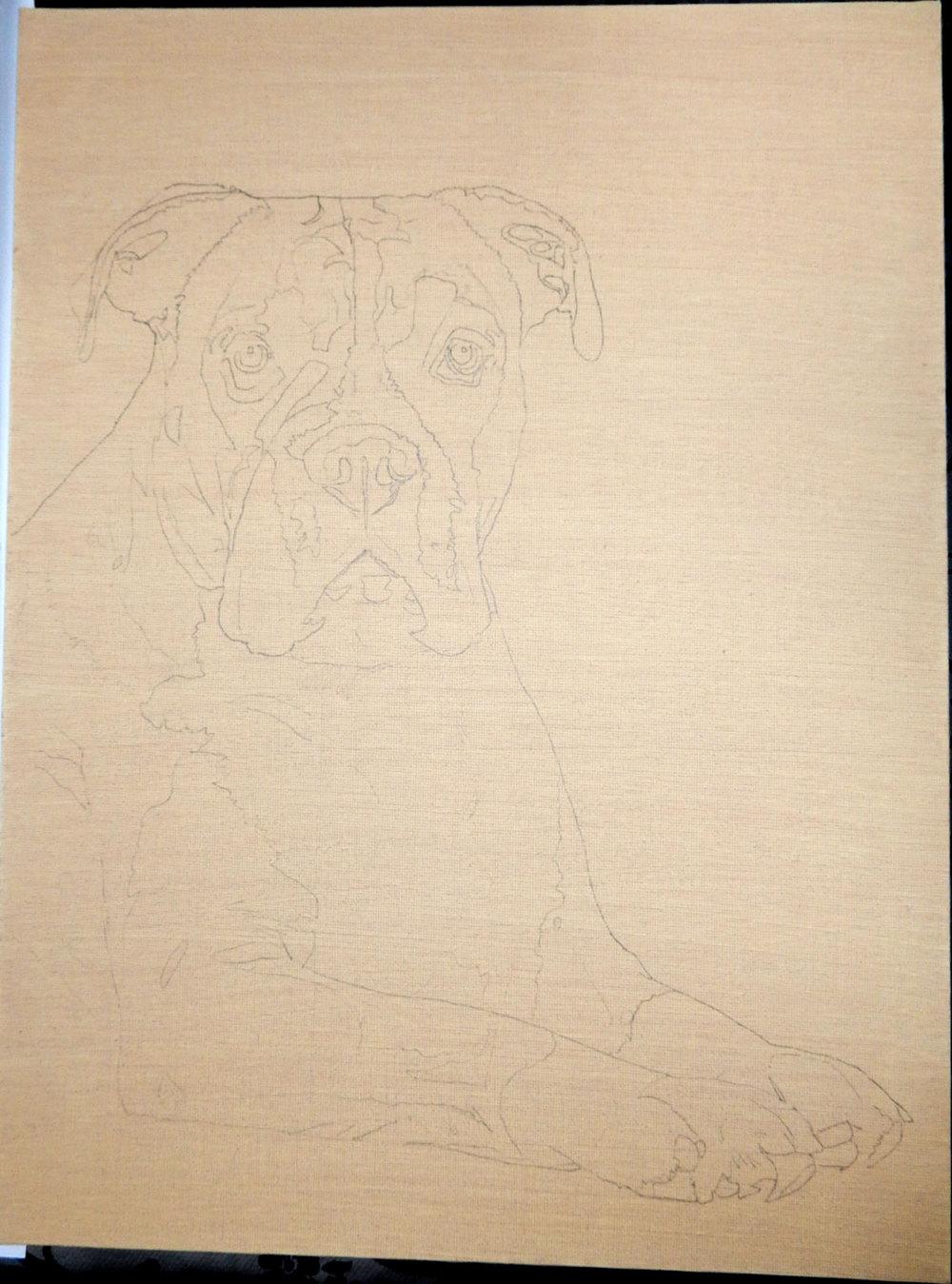 Rosie-Boxer-12-x-16-Acrylic-1.jpg