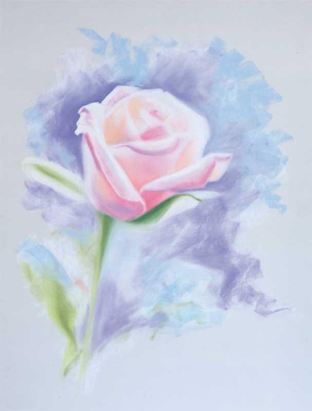 GP-Rose.jpg