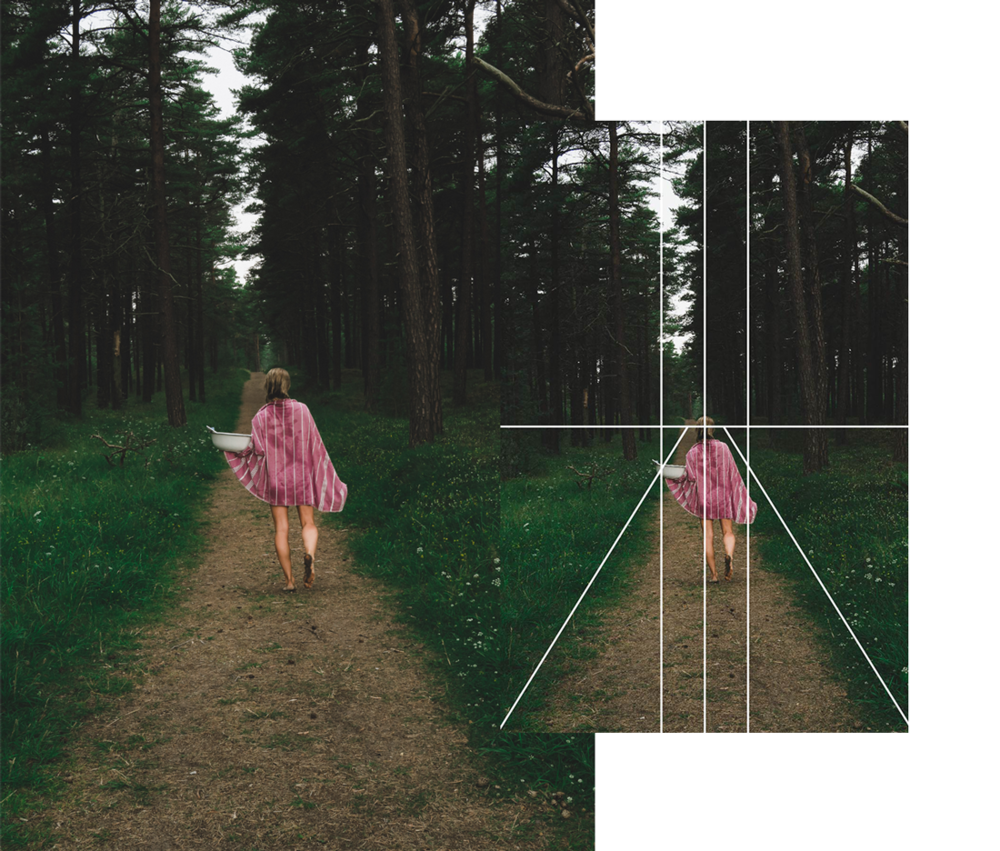 När du fotar : Identifiera landskapets olika linjer och skapa din komposition utifrån din observation.Exempelvis, notera hur träden växer i förhållande till hur de möts av en stig som leder bort och ut ur bild.