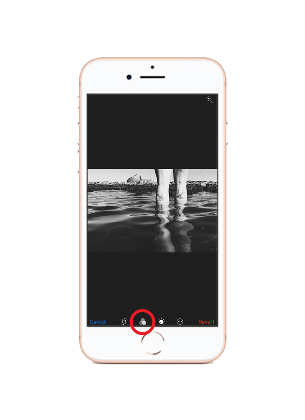 2. Filter - Gå till biblioteket för filter inne i redigeraren