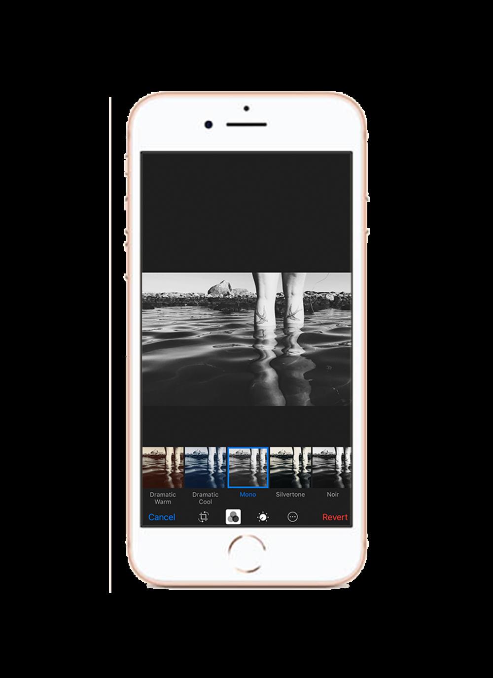 3. Välj filter - Välj sedan det filter du tycker är snyggast av de svart/vita och applicera det på samtliga bilder i ditt album. På så sätt skapar du ett enhetligt uttryck på alla bilder.