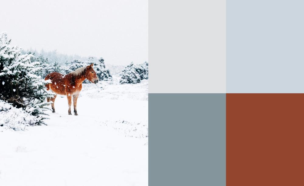 fk-fototips-vintern-färg-02.png